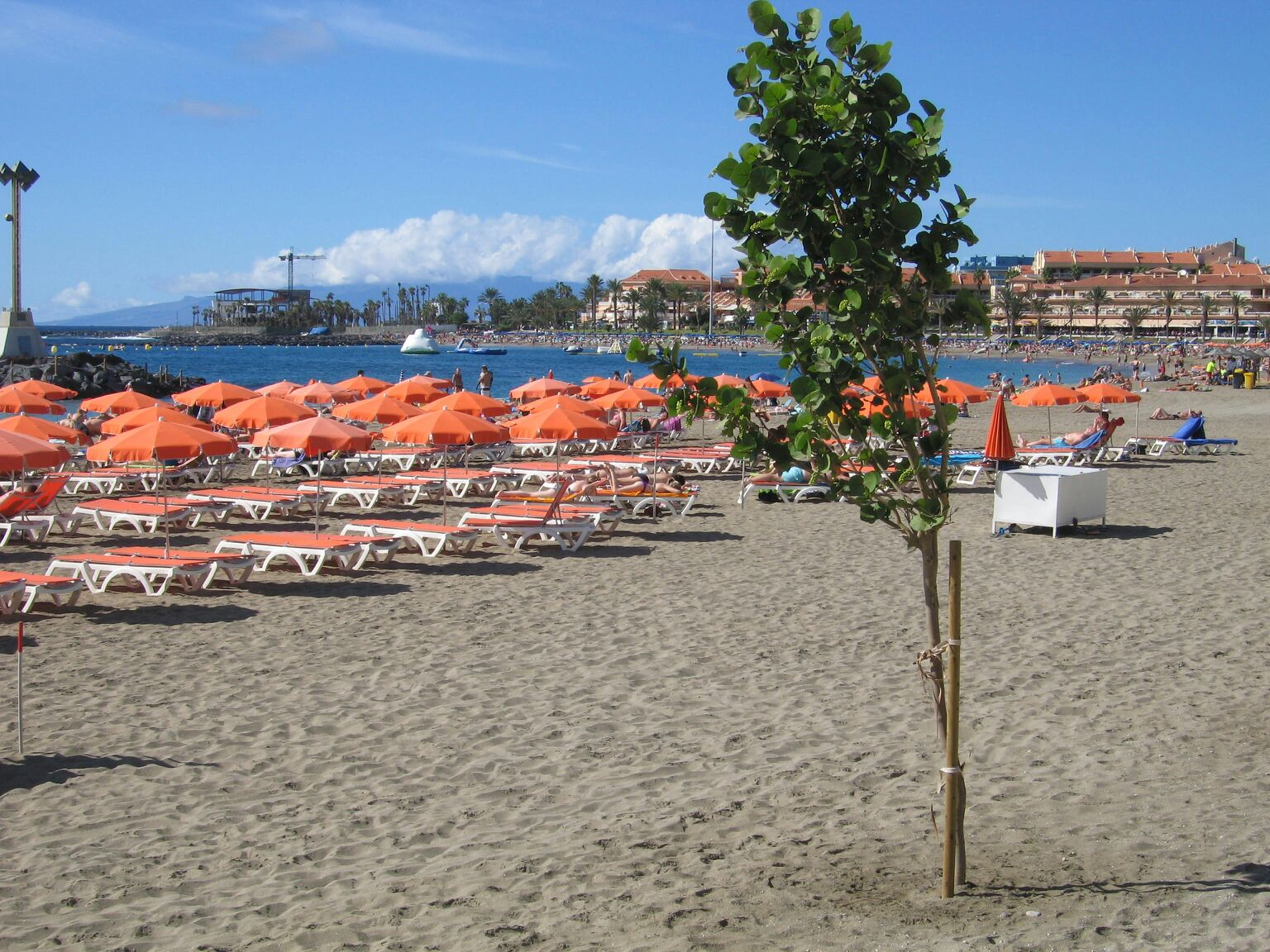 Playa Vistas beach Tenerife | White sand beaches in Tenerife