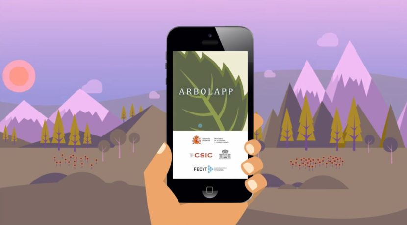 Arbolapp Canarias allows you to identify and find out more details about the most common wild trees found on the Canary Islands.