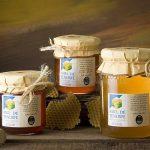 Tajinaste honey Tenerife wins the Canary Honey Competition 2017