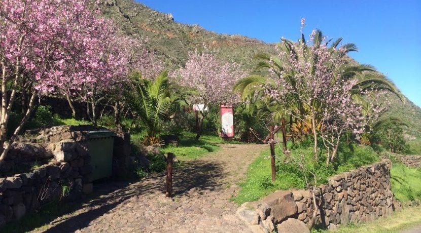 Inaugurated two self-guided trails in Buenavista del Norte, Tenerife