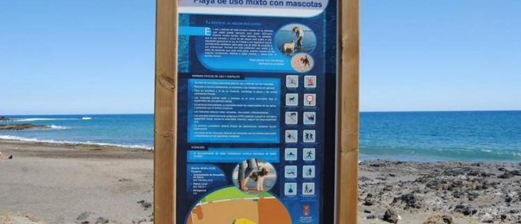Beaches for Dogs in Tenerife 2019